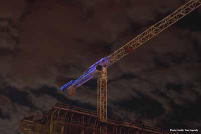 2012-08-07-crane1.jpg