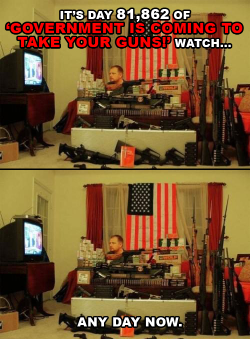 2012-08-09-guns.jpg