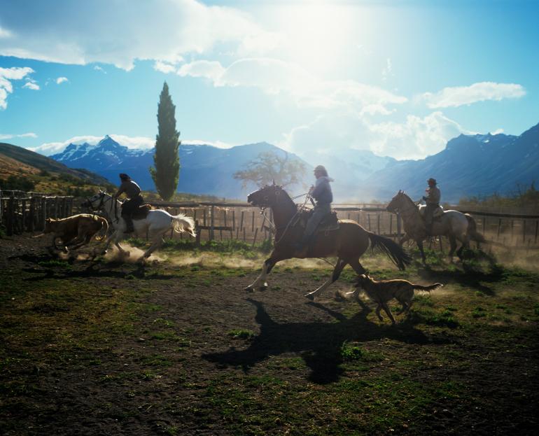 2012-08-15-argentina_cattleranchestanciafarm_iStock14624546S.jpg