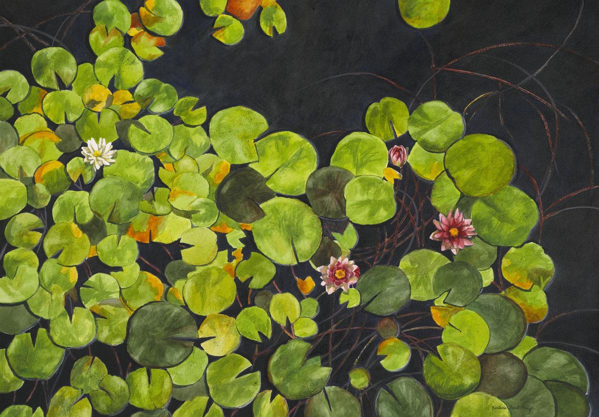 2012-08-16-WaterliliesGettyMuseum5x7.jpg