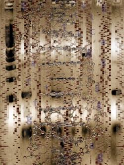 2012-08-23-Cryptobiology.jpg