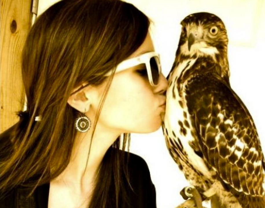 falconer single girls Askmen's top 10 channel offers you top 10 lists on a variety of topics: dating, entertainment, travel, fitness, video games, celebrity, sports and more.