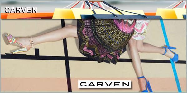 2012-09-05-CARVENpanel1.jpg
