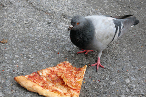 2012-09-06-pizza.jpg