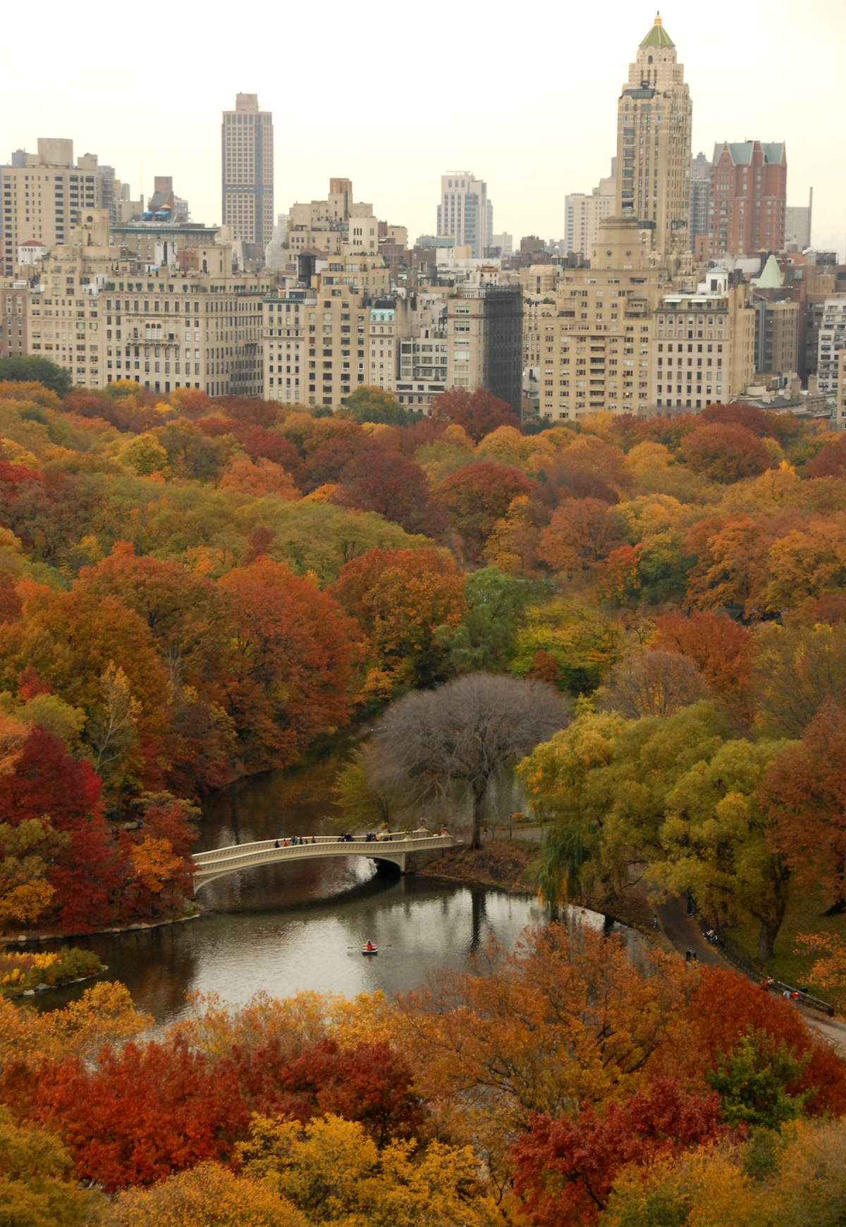 the big task of managing nature at new york u0027s central park huffpost