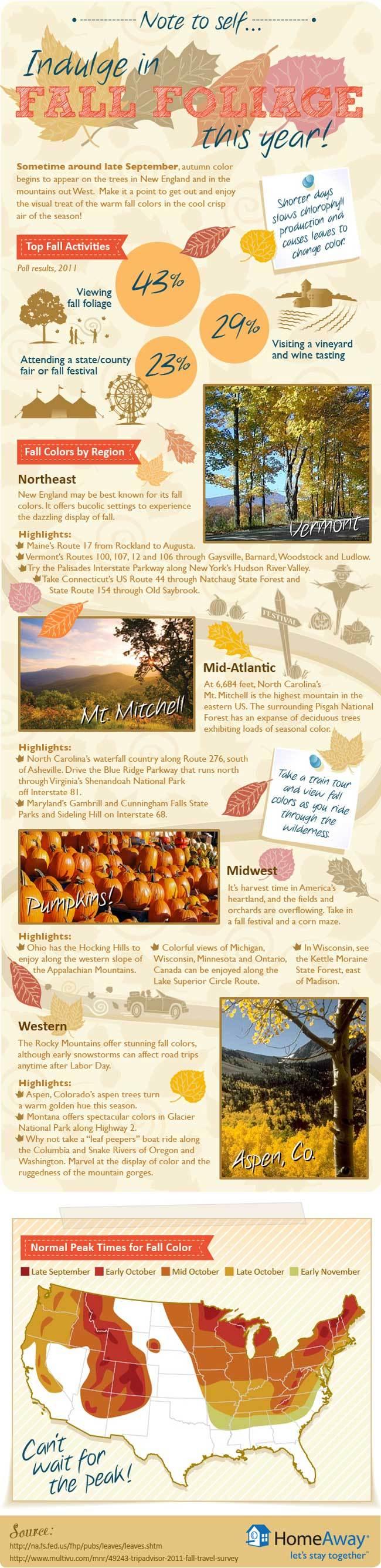 2012-09-11-FallFoliage.jpg