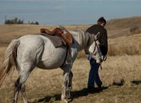 2012-09-15-horsewithvincent.jpg