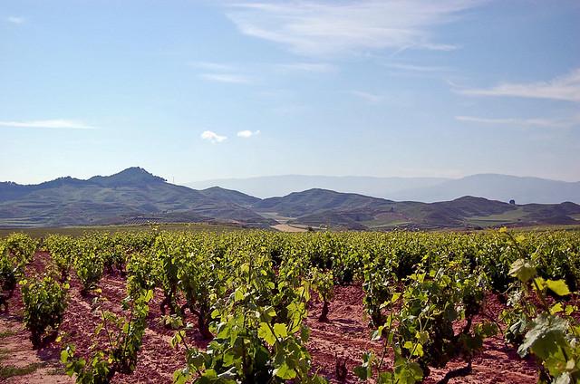 2012-09-18-VineyardsinLaRioja.jpg