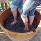 2012-09-19-winestomp.jpeg