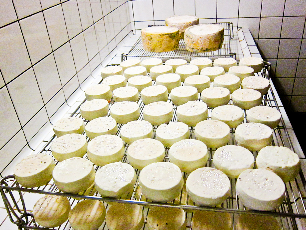 2012-09-24-Cheese.jpg