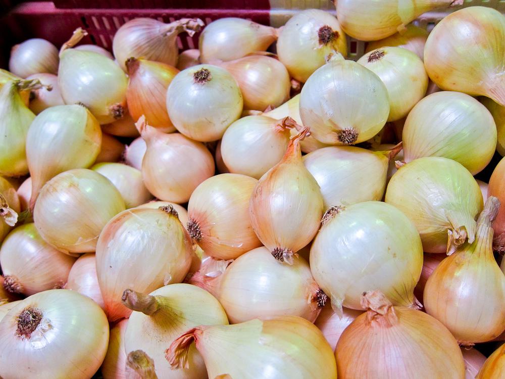 2012-09-24-Onions.jpg