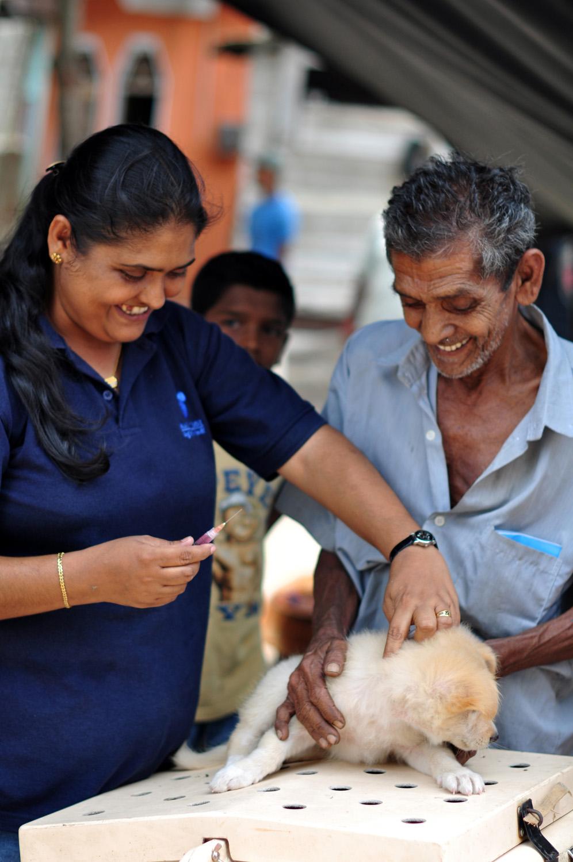 2012-09-26-SriLankaLocalmanvaccinatinghispuppy2.jpg