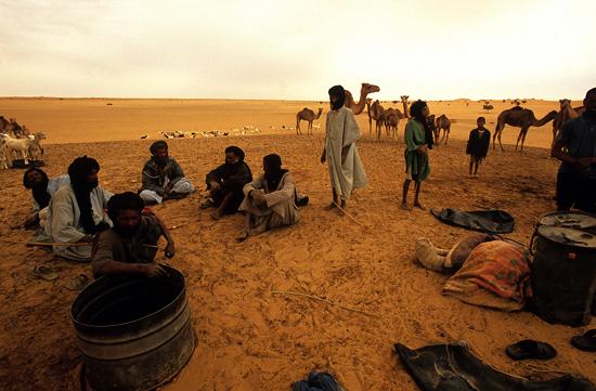 2012-09-29-CamellerosMALI1_HuffPost.jpg