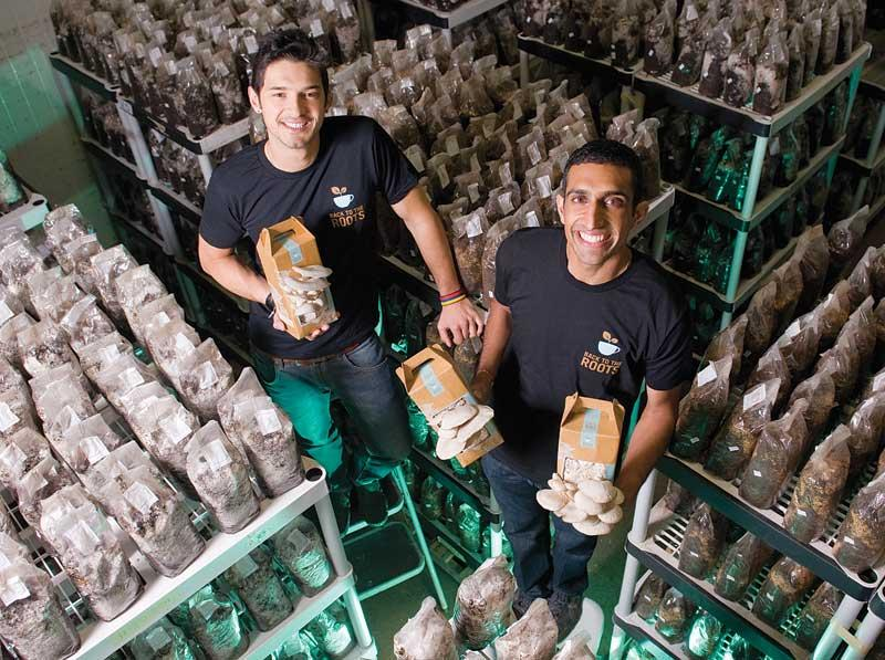 Businesses With Impact : Back To The Roots Mushroom Gardens | HuffPost