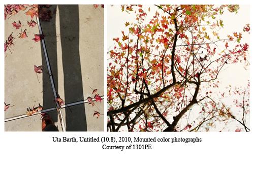 2012-10-03-at121002cc.jpg