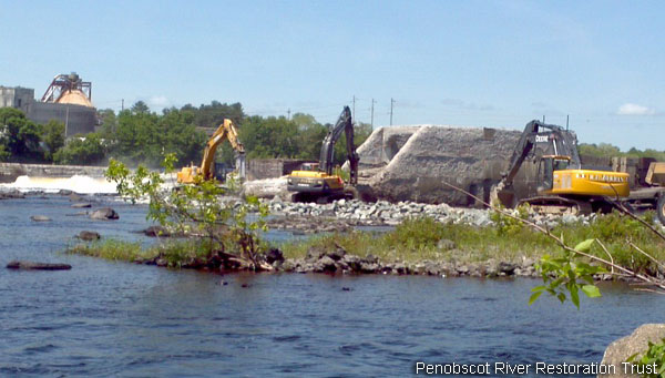 Penobscot River Restoration