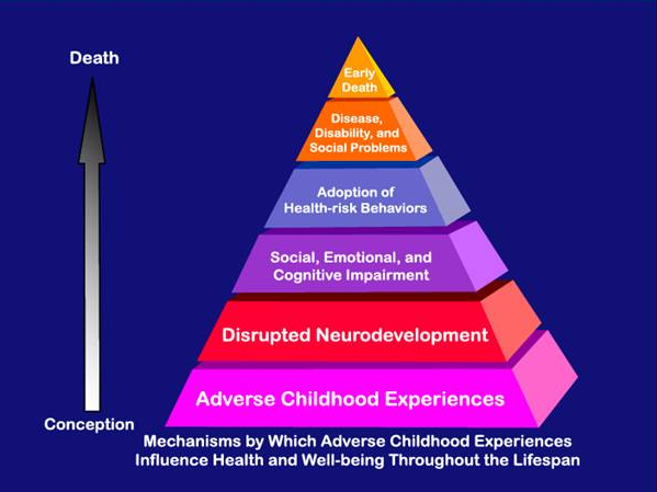 The Adverse Childhood Experiences Study The Largest