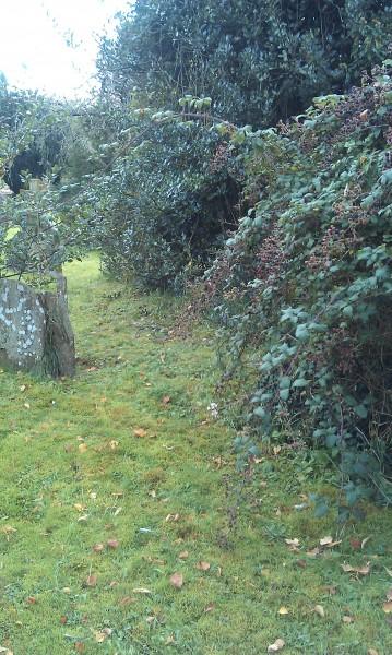 2012-10-09-graveyard.jpg