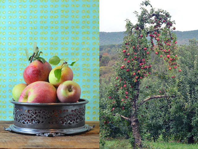 2012-10-12-apples_1.JPG