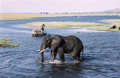 2012-10-15-botswana1.jpg