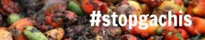 2012-10-17-stopgachis600x3562.jpg
