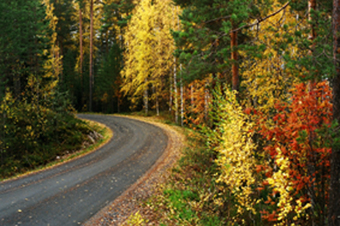 2012-10-19-JOGGINGINAUTUMN.jpg