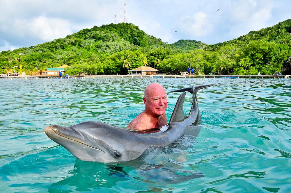 2012-10-22-dolphin.jpg