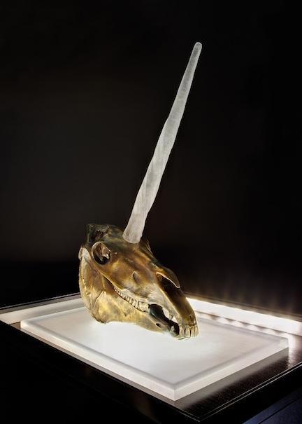 2012-10-22-unicorncloseup.jpg