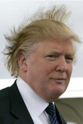 2012-10-24-Trumphair.png