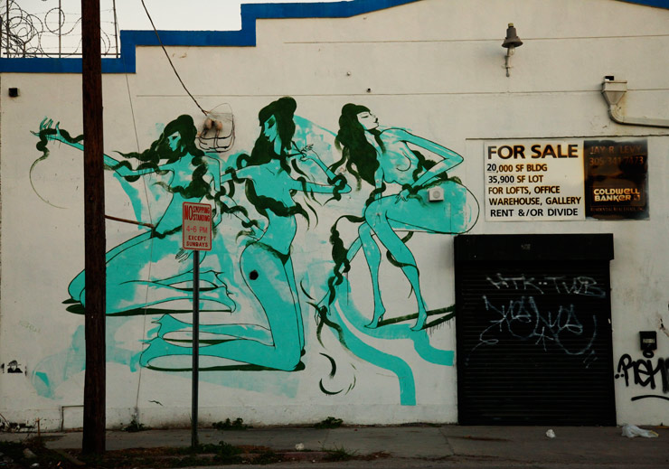 2012-10-24-brooklynstreetartsofiamaldonadojaimerojo1012web.jpg