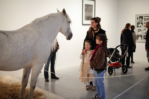 2012-10-25-TR_Beuys_horsecopy.jpg