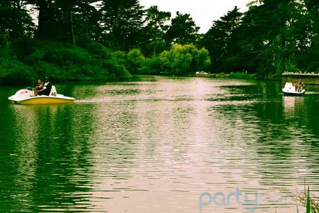 2012-11-02-goldengatepark_s460.jpg