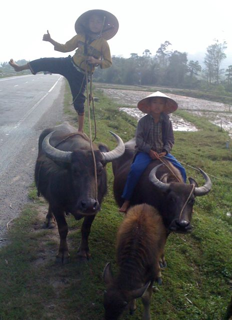 2012-11-04-buffaloboys.jpg