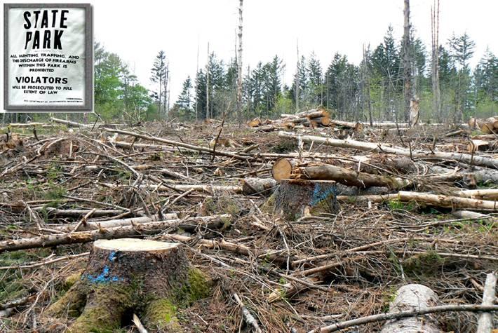 2012-11-05-bio1.jpg