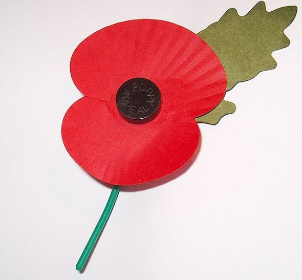 2012-11-07-646pxroyal_british_legions_paper_poppy__white_background.jpg
