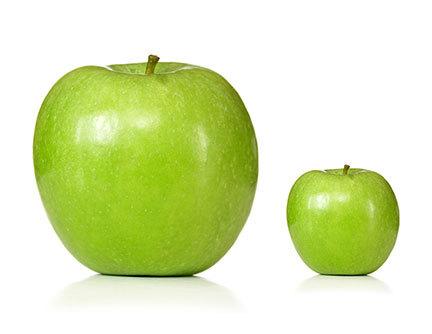 2012-11-07-fruit-ApplesEightVol.jpg