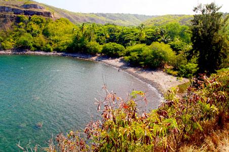 2012-11-09-snorkelHonoluaBay.jpg