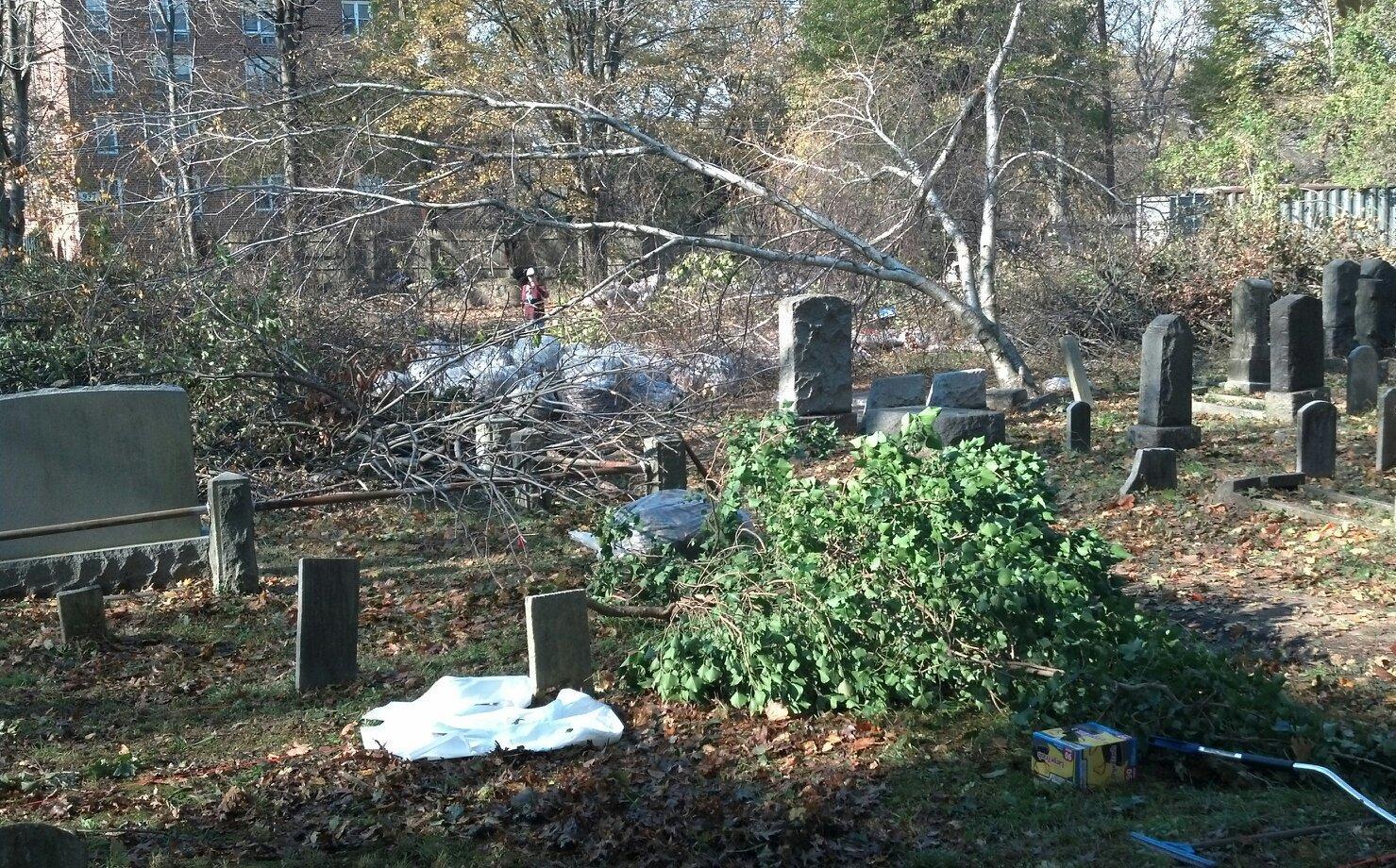 2012-11-13-postSandycleanup.jpg