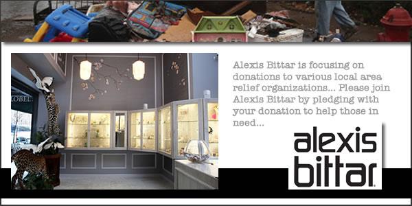 2012-11-15-AlexisBittarpanel1.jpg