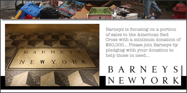 2012-11-15-Barneyspanel1.jpg