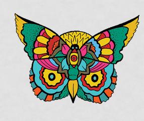 2012-11-16-ButterflyOwlMattMacriakaOcteel.jpg