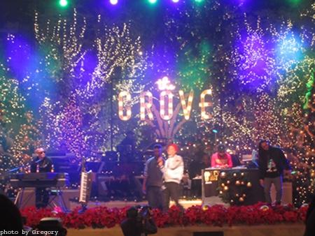 2012-11-17-Grove1.JPG