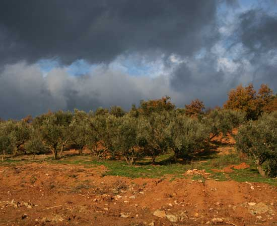 2012-11-20-CloudsOverBigMountainhuffpostblog.jpg