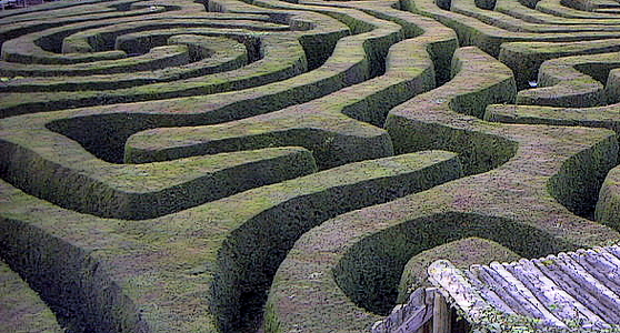 2012-11-23-800pxLongleat_maze.jpg