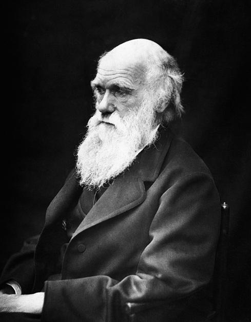 2012-11-29-Charles_Darwin_01.jpg