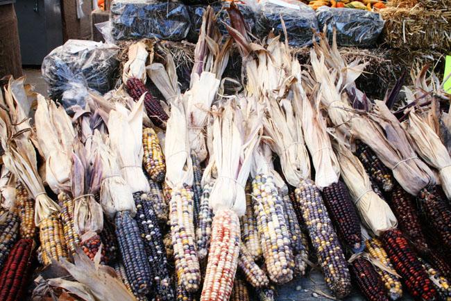 2012-11-29-JeanTalonMarketcorn.jpg
