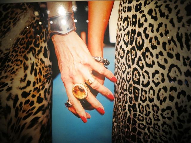2012-12-07-CougarFriendsbyJessicaCraigMartinatamfAR.JPG