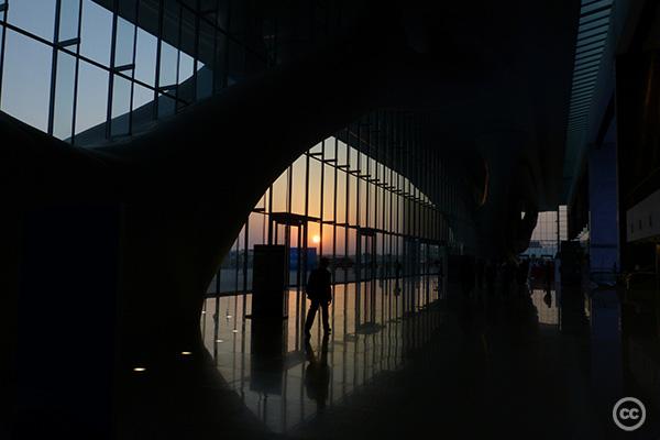 2012-12-08-Dohacop18ccKellyRiggtcktcktck.jpg