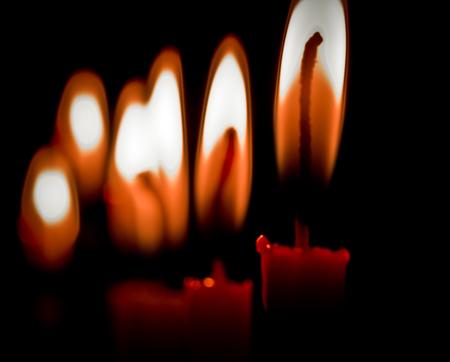 2012-12-09-treelightroom1.jpg