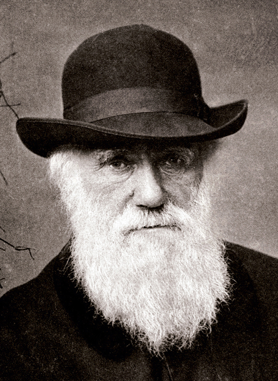 2012-12-10-Charles_Darwin_1880_National_Galleries_of_Art.jpg